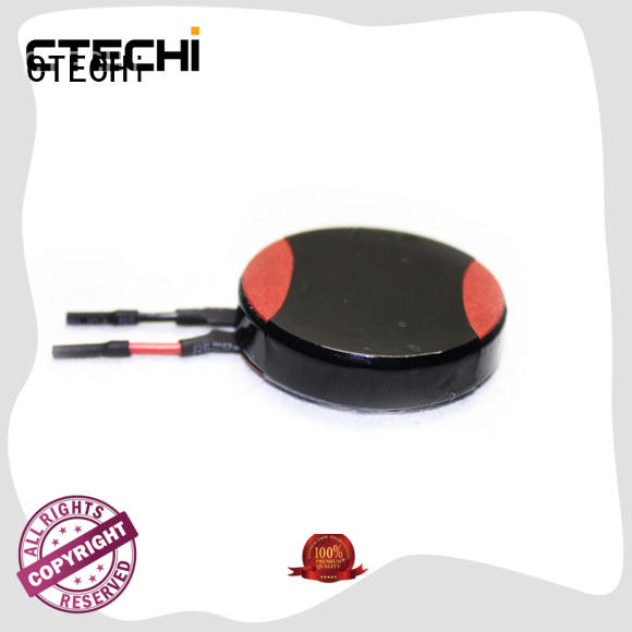 CTECHi large lithium cell batteries personalized for electric toys
