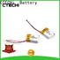 CTECHi smart li-polymer battery personalized for